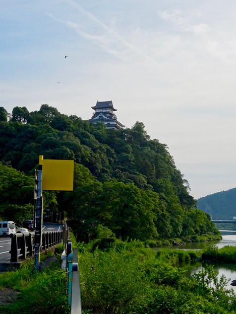 写真: 木曽川沿いから見上げた、落雷でシャチホコが壊れた犬山城(2017年7月15日) - 1