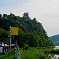 写真: 木曽川沿いから見上げた、落雷でシャチホコが壊れた犬山城(2017年7月15日) - 2