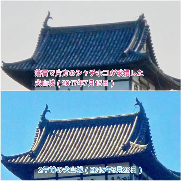 写真: 落雷でシャチホコが破損した数日後の犬山城と2年前(2015年3月)の犬山城比較 - 3