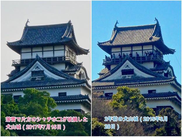 落雷でシャチホコが破損した数日後の犬山城と2年前(2015年3月)の犬山城比較 - 6