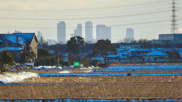 小牧市大草から見えた名駅ビル群 - 2