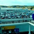 写真: オープン4ヶ月後のIKEA長久手 - 2:駐車場は満車!