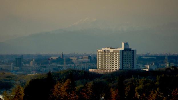 愛・地球博記念公園駅から見えた(たぶん)雪を戴く伊吹山 - 4