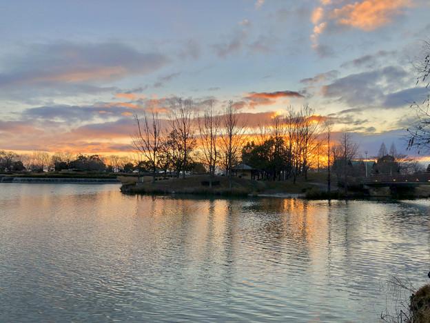 落合池の夕焼け - 1