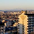 写真: 県営岩崎住宅(岩崎団地)から見えた、雪を戴く御嶽山 - 1
