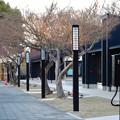 写真: 今月(2018年3月)末にオープン予定の「金シャチ横丁」:宗春ゾーン No - 6