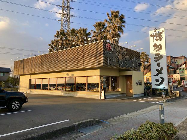 鶴亀堂 春日井店 - 1