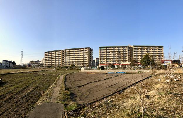 県営岩崎住宅 - 2 (パノラマ)