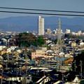 県営岩崎住宅から見たスカイステージ33 - 1