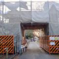 写真: 改修工事中だった名古屋城 二之丸大手二之門 - 2