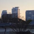 写真: 名古屋城正門近くから見上げた名駅ビル群 - 1