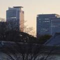 写真: 名古屋城正門近くから見上げた名駅ビル群 - 2