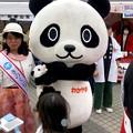 旅まつり名古屋 2018 No - 23:和歌山県のゆるキャラ「わかぱん」