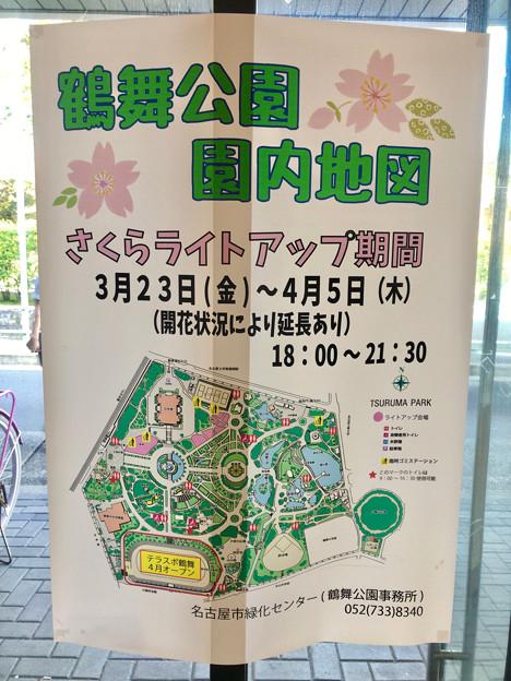 たくさんの人で賑わってた、桜咲く鶴舞公園(2018年3月24日) - 6:ライトアップ期間は4月5日まで