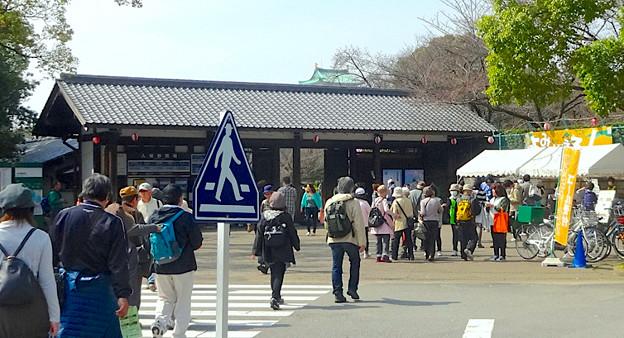 写真: 名古屋城東門手前からわずかに見えた名古屋城天守閣(2015年3月撮影)
