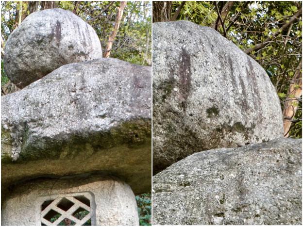 東山動植物園:パンプキン顔(ジャック・オー・ランタン)が浮かび上がって見えた中国庭園の石灯籠 - 7