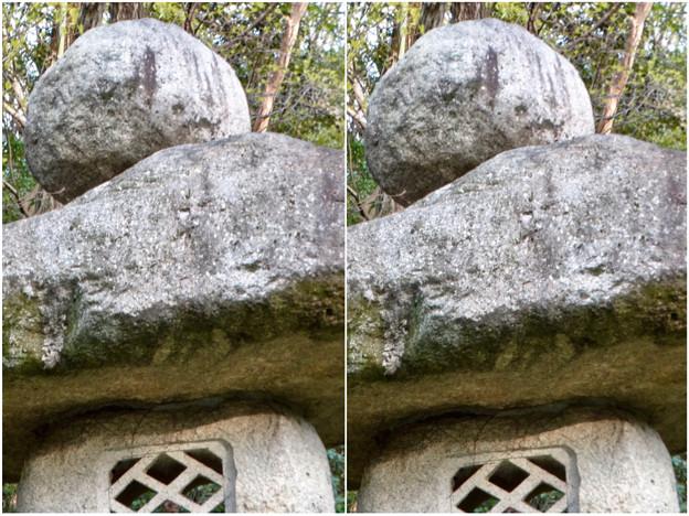 東山動植物園:パンプキン顔(ジャック・オー・ランタン)が浮かび上がって見えた中国庭園の石灯籠 - 9