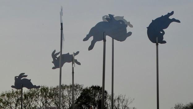 東山動植物園:花畑 - 5(ウサギの装飾)