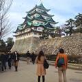 写真: 西之丸から見上げた名古屋城天守閣(2013年撮影)