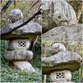 写真: 東山動植物園:パンプキン顔(ジャック・オー・ランタン)が浮かび上がって見えた中国庭園の石灯籠 - 11