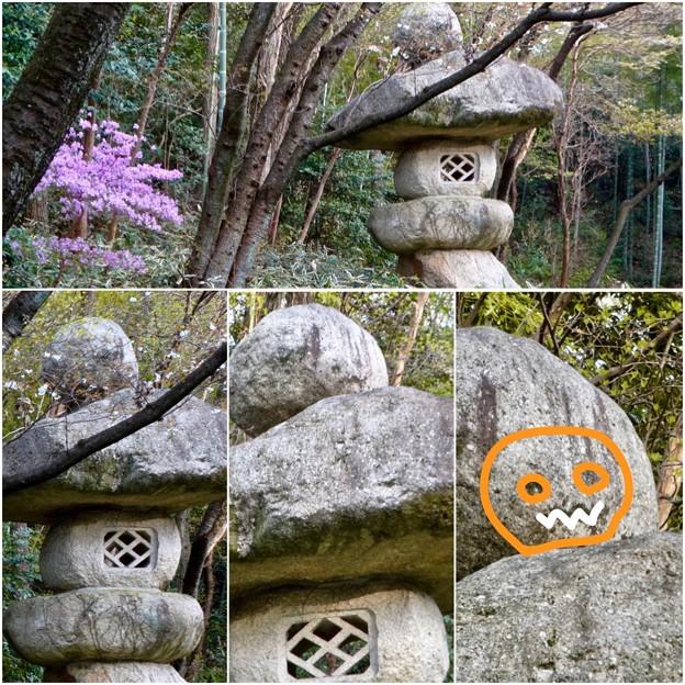 東山動植物園:パンプキン顔(ジャック・オー・ランタン)が浮かび上がって見えた中国庭園の石灯籠 - 14