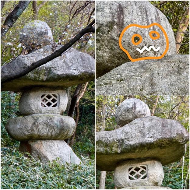 東山動植物園:パンプキン顔(ジャック・オー・ランタン)が浮かび上がって見えた中国庭園の石灯籠 - 18