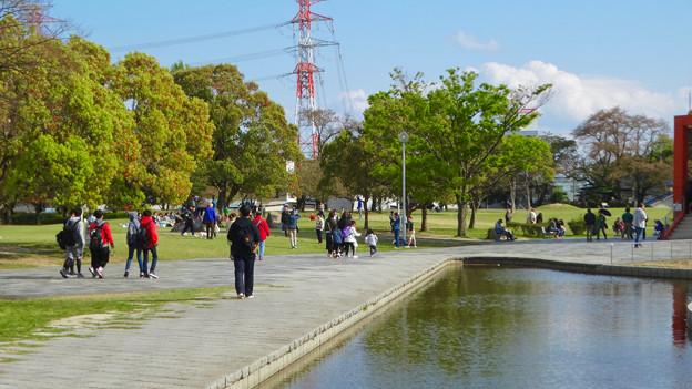 春日井名物グルメ王座決定戦開催もあってか、普段より混んでた日曜の落合公園 - 4