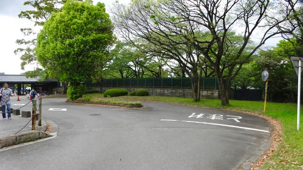 写真: お土産屋 兼 物見櫓を建てたら良いのではと思った名古屋城東門横の場所 - 1