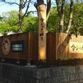 写真: 金シャチ横丁「義直ゾーン」 - 3