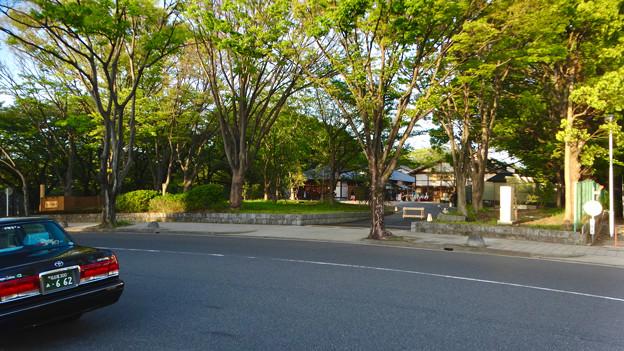 金シャチ横丁「義直ゾーン」 - 37:駐車場との間にある道路