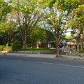 写真: 金シャチ横丁「義直ゾーン」 - 37:駐車場との間にある道路