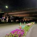 桃花台線の旧車両基地進入高架撤去工事(2018年4月26日) - 1:通行止めの準備進む