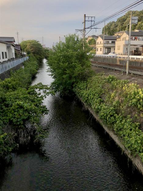 名鉄小牧線沿いを流れる川(味岡-田方神社前間) - 3