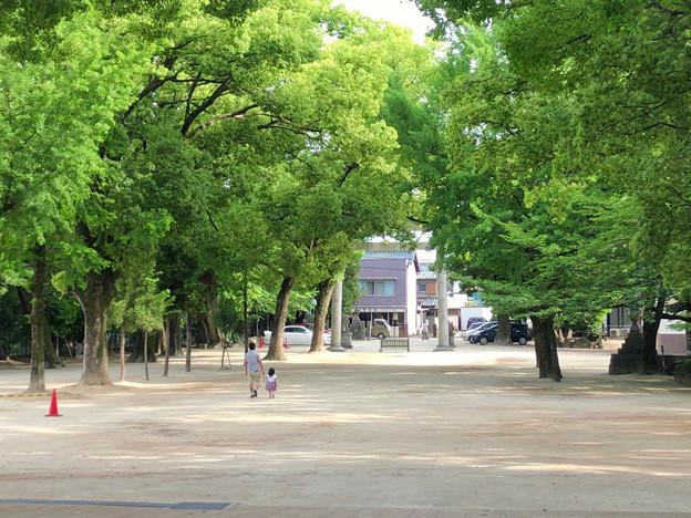 挙母神社 No - 35