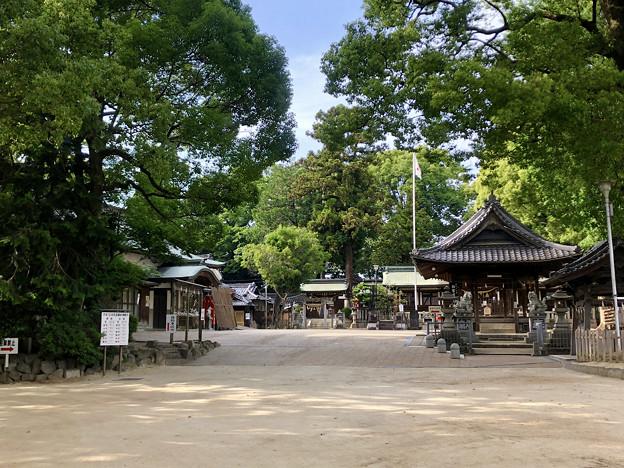 挙母神社 No - 42