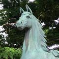 写真: 挙母神社 No - 61:アニメチックな顔をしてる馬の像