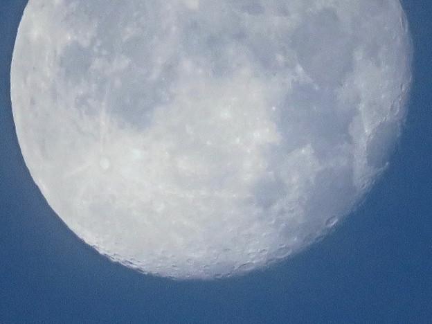 WX3000よりくっきり見えた、SX730 HSデジタル160倍で撮影した早朝の満月 - 2