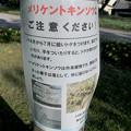 写真: 外来植物「メリケントキンソウ」の拡大に注意を促す張り紙 - 1