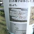写真: 外来植物「メリケントキンソウ」の拡大に注意を促す張り紙 - 2