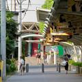 Photos: 中京競馬場まで続く道「フローラルウォーク」 - 6