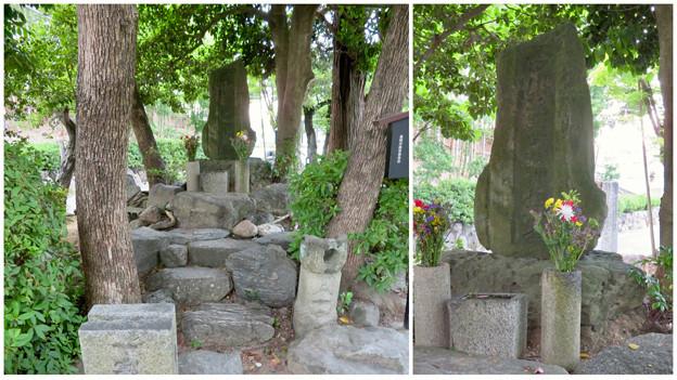 桶狭間古戦場 - 37:今川義元の墓