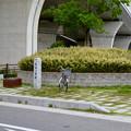 Photos: 有松一里塚 - 2