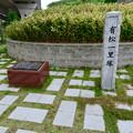 Photos: 有松一里塚 - 4