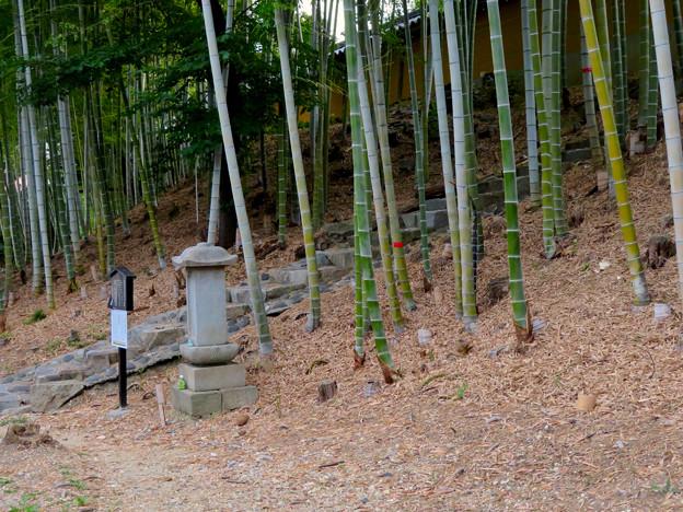 高徳院 No - 13:今川義元の仏式の墓
