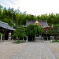 Photos: 高徳院 No - 25