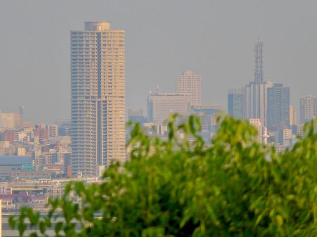 小牧山山頂から見たザ・シーン城北とNTTドコモ名古屋ビル