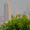 Photos: 小牧山山頂から見たザ・シーン城北とNTTドコモ名古屋ビル