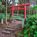 Photos: 吉五郎稲荷 - 1