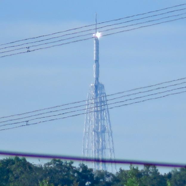 桃花台から見た瀬戸デジタルタワー - 1