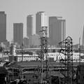 写真: イオン小牧店から見た名駅ビル群 - 6(モノクロ)